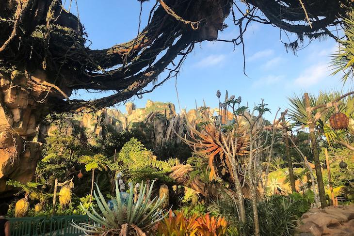 Flora and fauna in Pandora Land