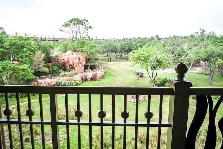 Standard room savanna view
