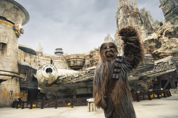 Chewbacca is always a hit in Star Wars: Galaxy's Edge
