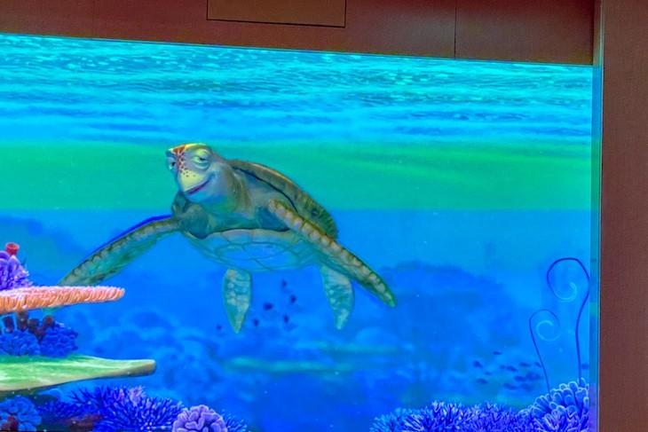 Animator's Palate Undersea Magic show with Crush