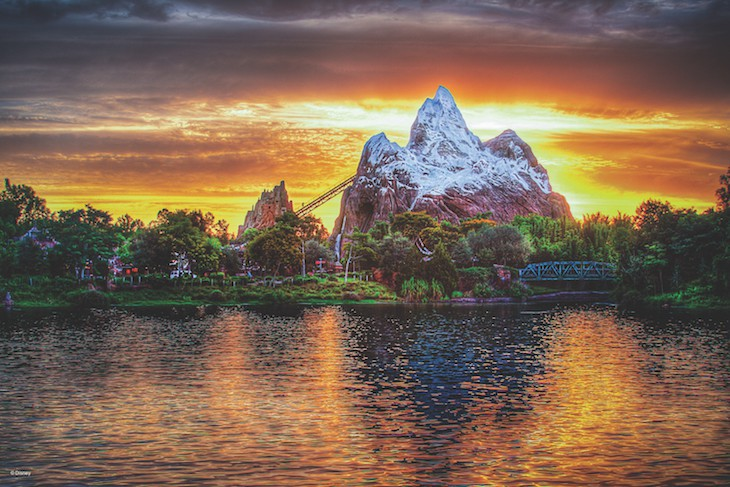 Expedition Everest® Attraction