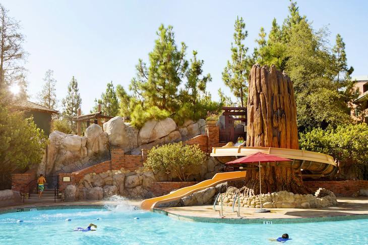 Redwood Pool Slide