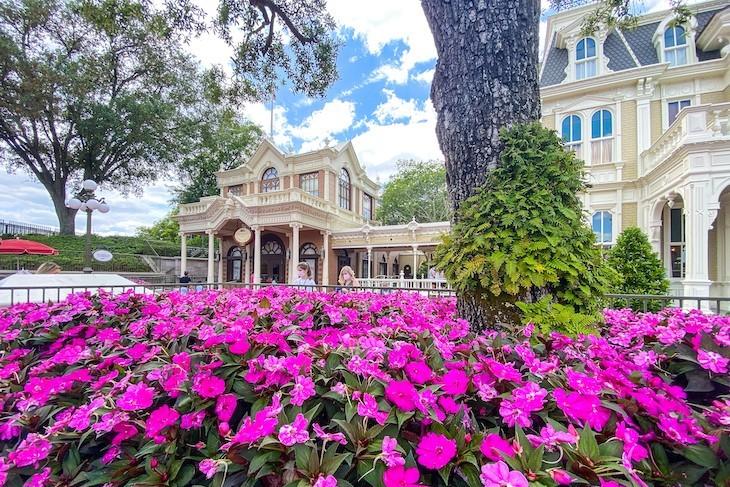 Flowers in bloom on Main Street U.S.A.